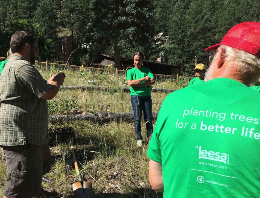 Leesa employees planting trees as part of their One-Earth initiative
