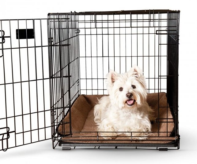 K&H crate dog bed