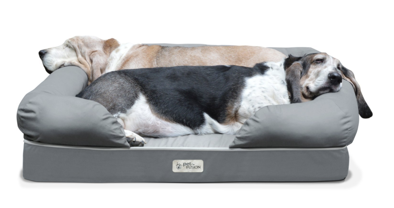 indestructible dog best talking the orthopedic beds bed
