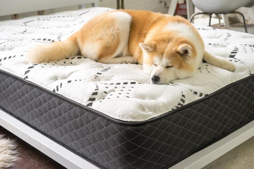 LUFT memory foam mattress
