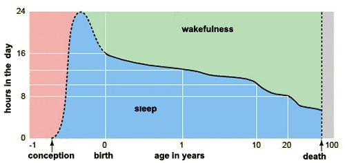 Changing sleep hours throughout life (image from The Brain from Top to Bottom)