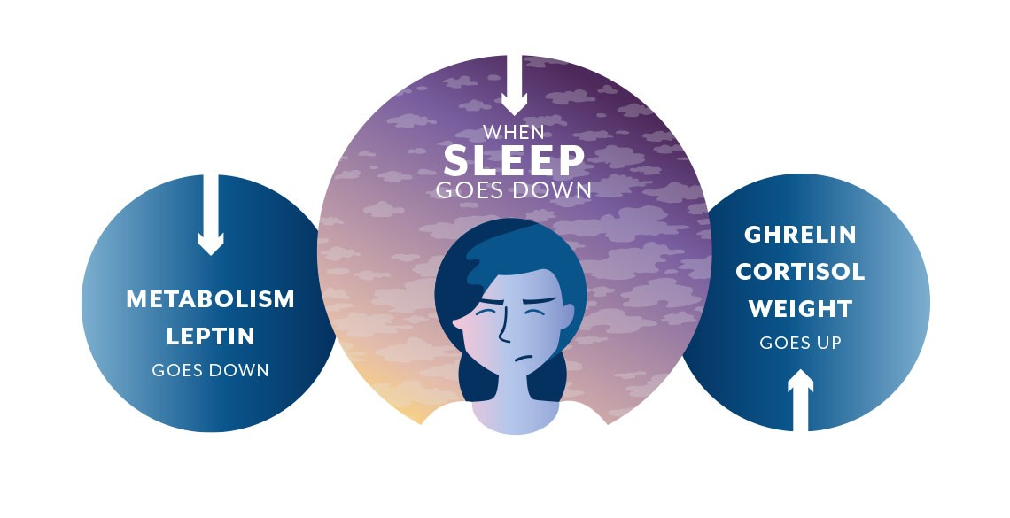 A graphic that illustrates how the hormones leptin and ghrelin are affected by sleep loss