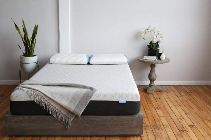 bear mattress in a bedroom