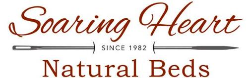 Soaring heart logo