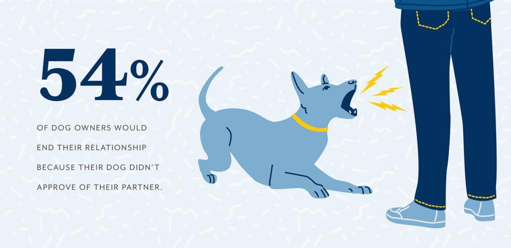 Pet Survey 03