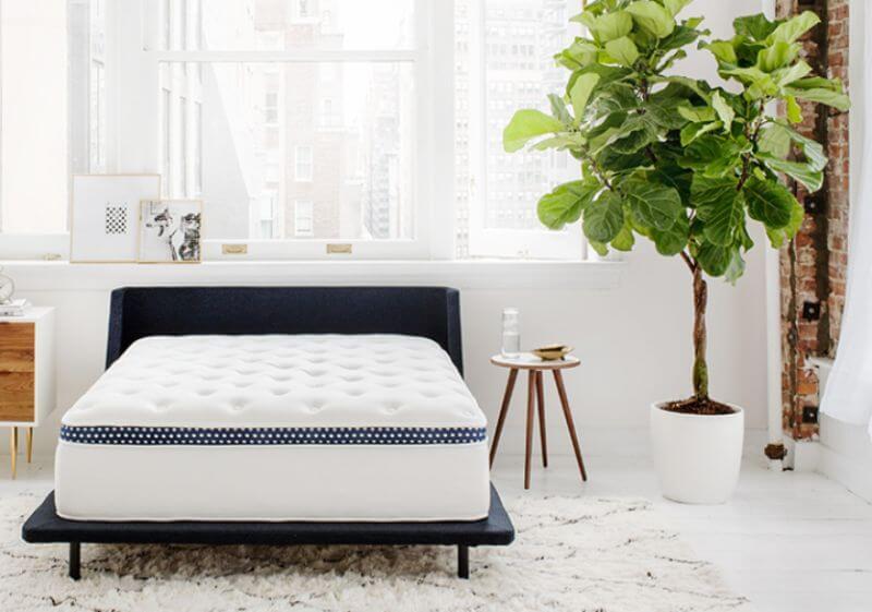Winkbed Luxury Firm mattress in a bedroom