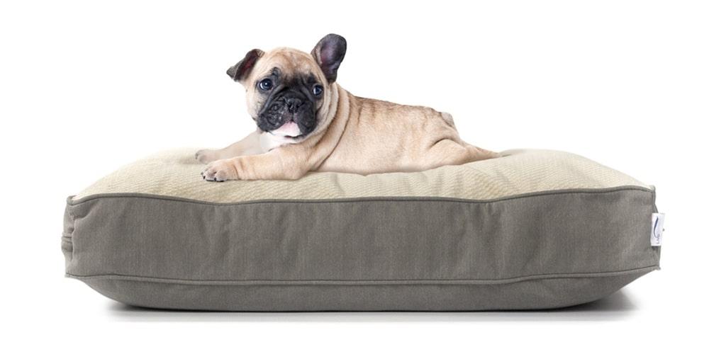 dog bed eluxury