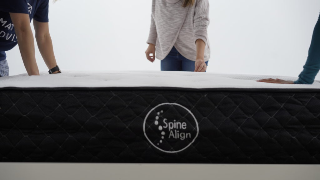 spinealign hybrid product