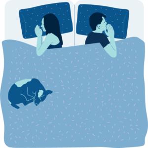 cartoon king bed