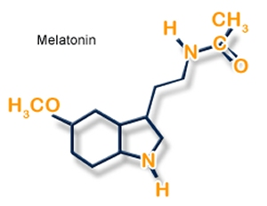 Melatonin is naturally synthesized in the body from seratonin (image from Best Sleep Aids)