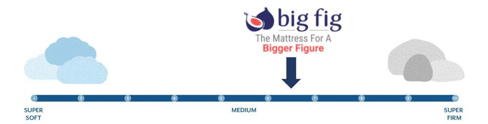 big fig firmness graphic